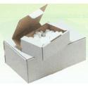 Caja postal blanca